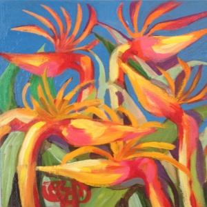 Birds of Paradise ABQ